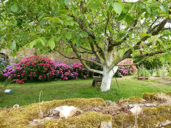 Un peu de Bretagne : jolis jardins de campagne