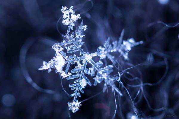 Tiny snowflake macro