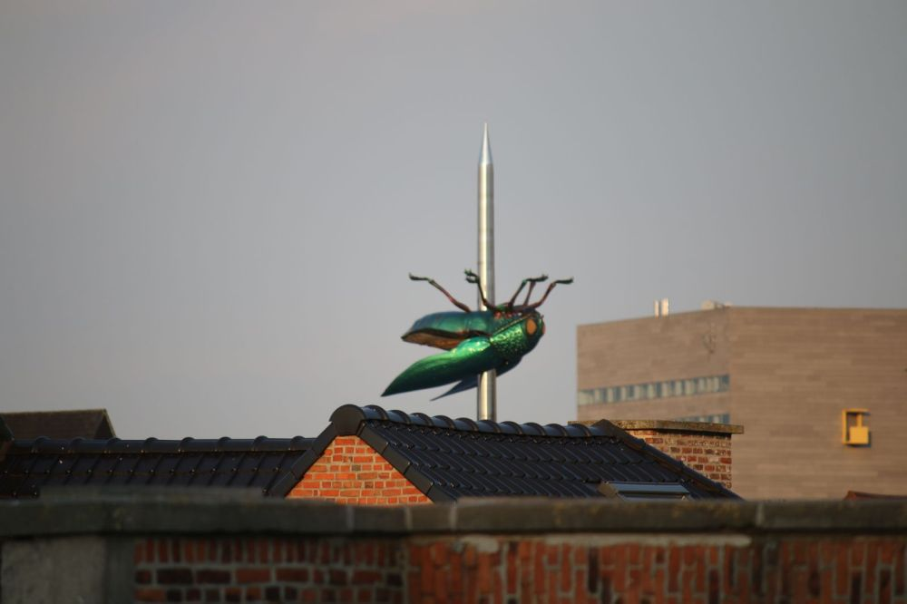 Beetle on a needle by Jan Fabre, Leuven, Belgium