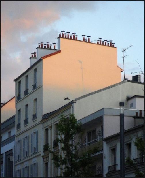 Le petit pan de mur rose