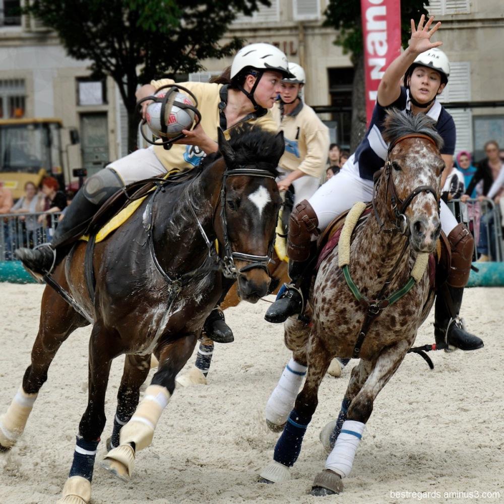HORSE BALL
