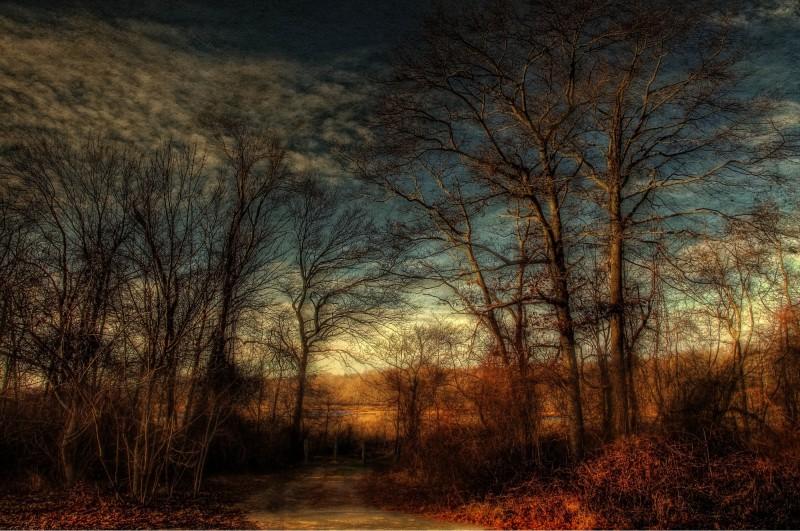 Dawn, Lakeville, Massachusetts