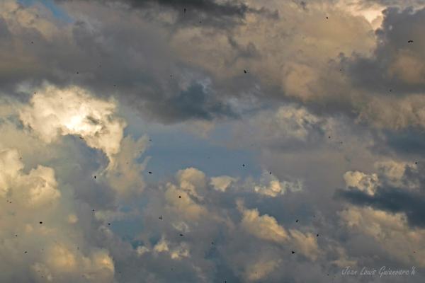 Ciel d'orage. / Stormy sky.