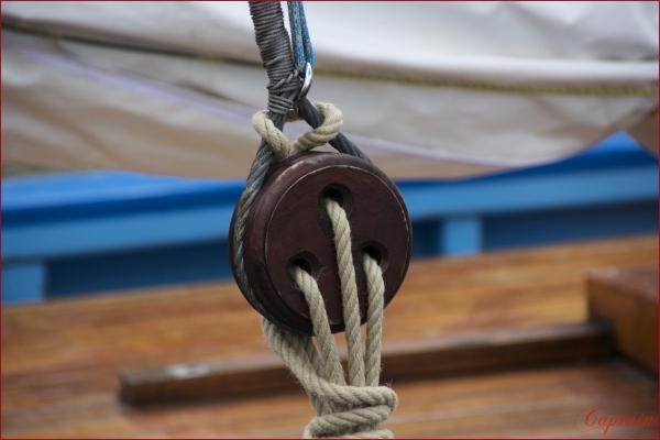 Design marin