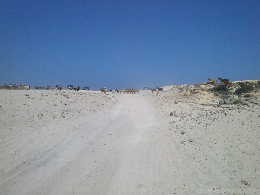 Traffic jam along Kata Beach (Kos) in summer/2014.