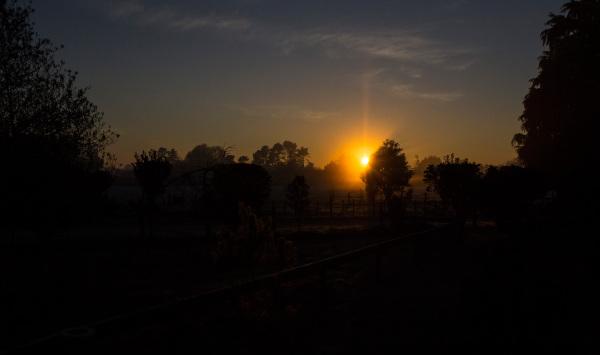 Matangi Morning