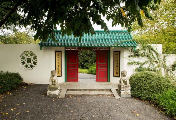 Chinese Scholar's Garden Hamilton