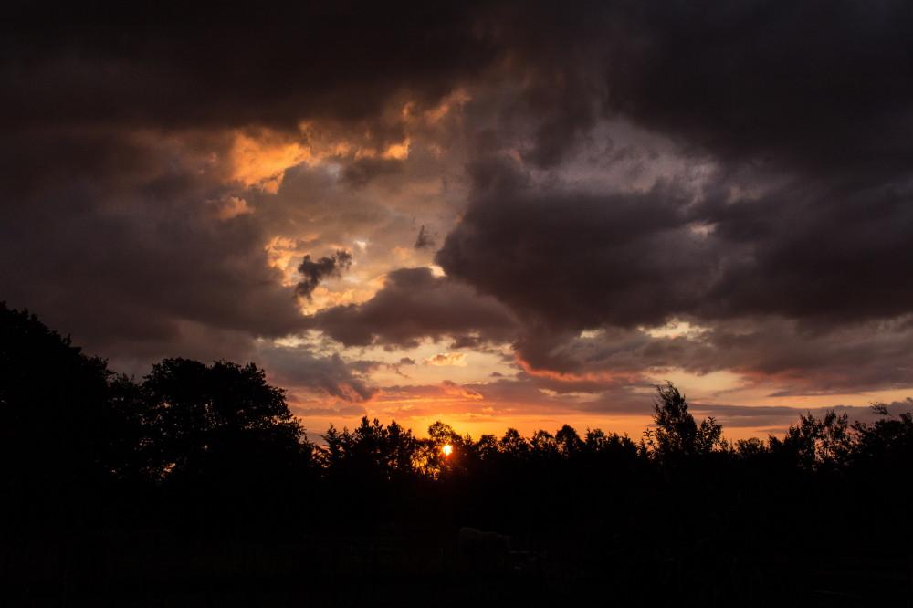 sunset waikato new zealand