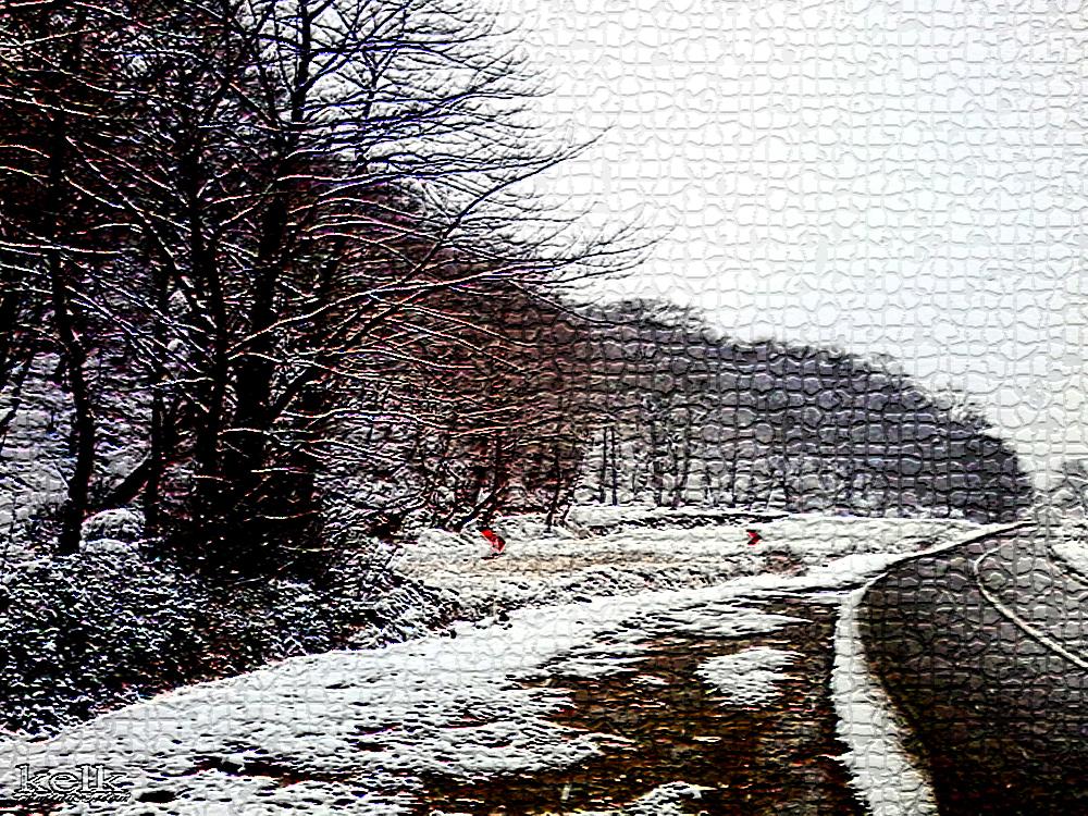 ظهر یک روز برفی زمستانی
