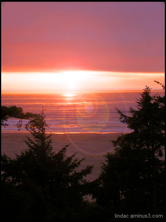 Ruby Beach Sunset & Sunflares