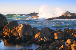 Pacific Grove, Monterey Bay County
