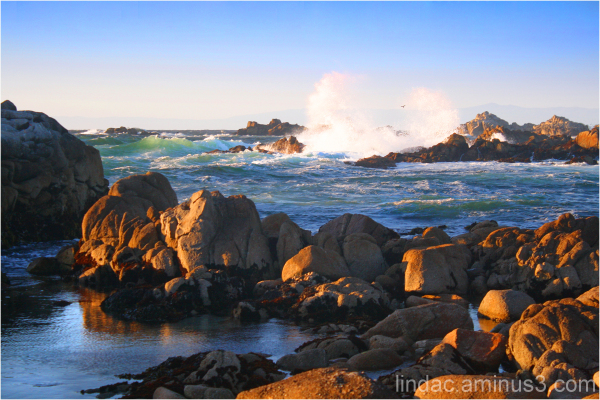 Pacific Grove, Monterey Bay County