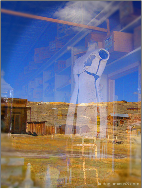Reflection of Bodie in Store Window