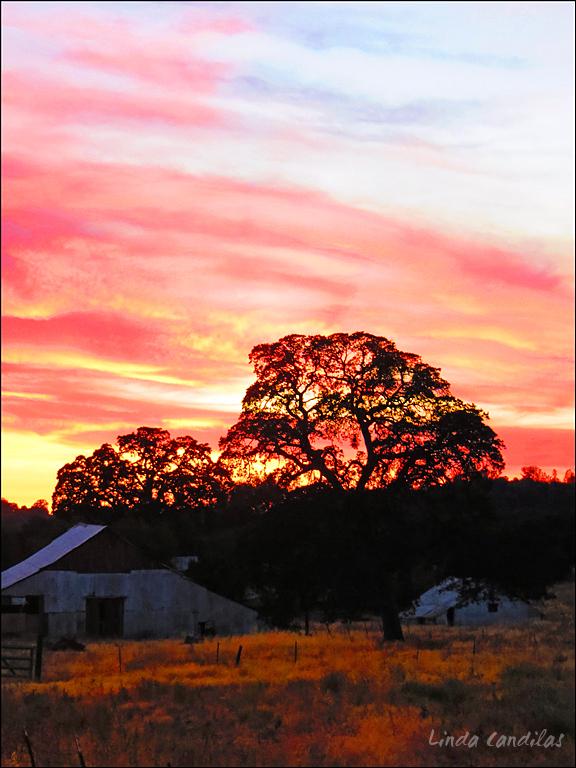 Farmstead at Sunset