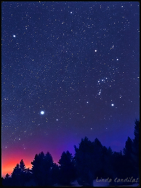 Montana Stars, Night Sky