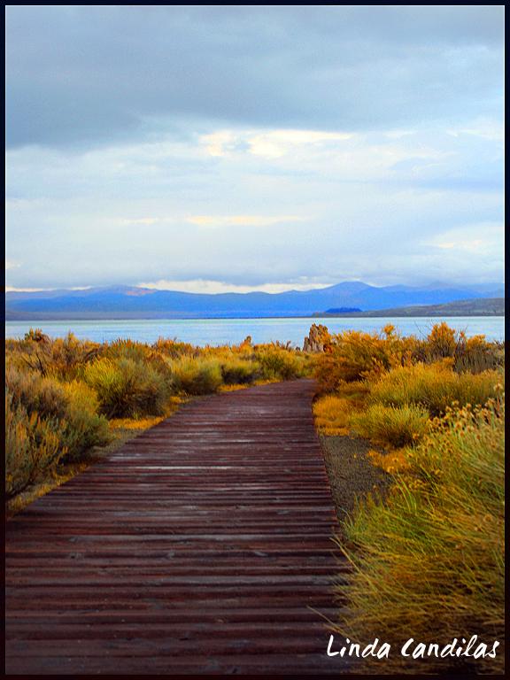 Broadwalk South Tufa's, Mono Lake
