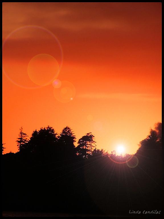 Half Moon Bay Sun Flares
