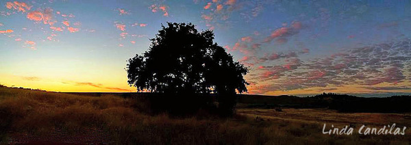 El Dorado Hills Sunset