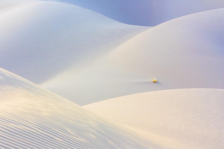 A shot taken in Maranjab Desert, Iran.