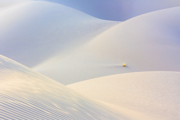 A shot taken in Maranjab Desert, Iran.