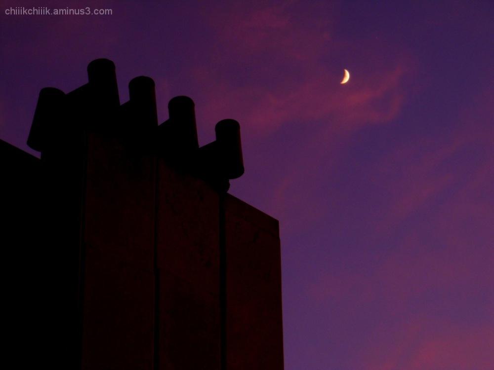 sunset moon violet