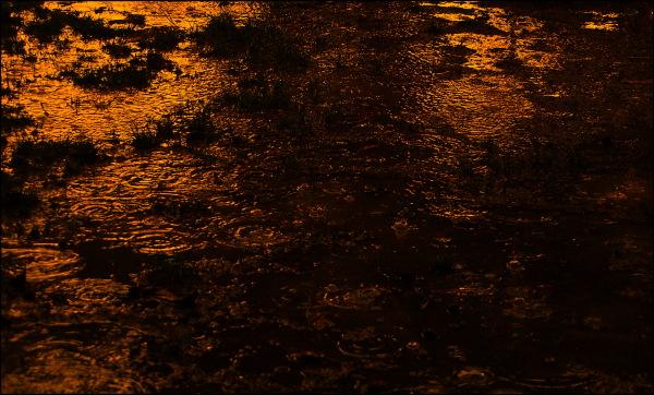 Pluie du soir, espoir