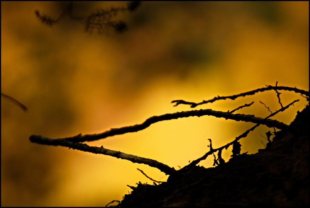 Au bord des ocres | Hanging over ochre