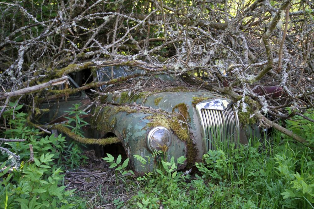 Car Graveyard VII