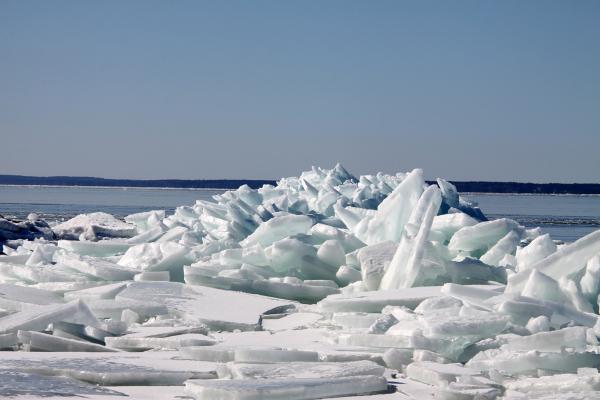 Iceberd