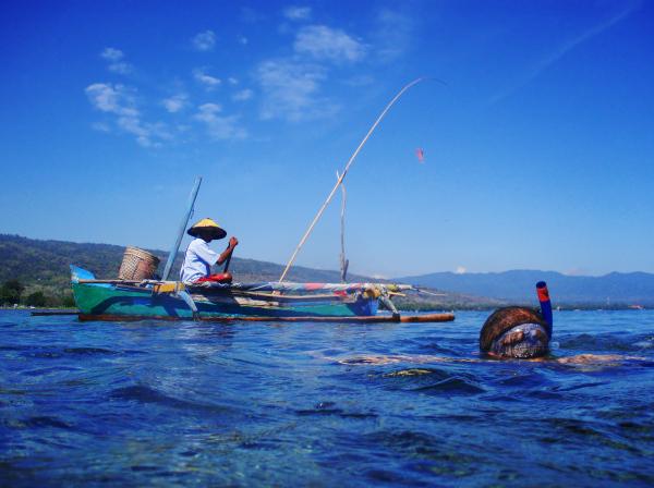 Snorkeling #3 (Fin)