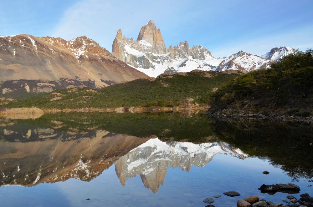 Argentine #7