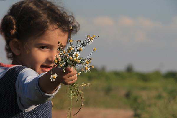 "-""My Flowers, Aunt..."""