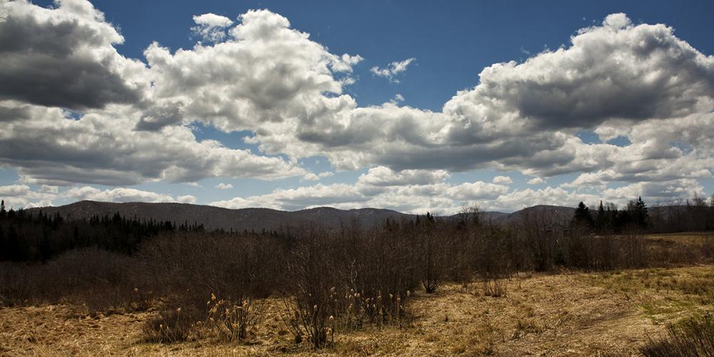 Spring in Vermont