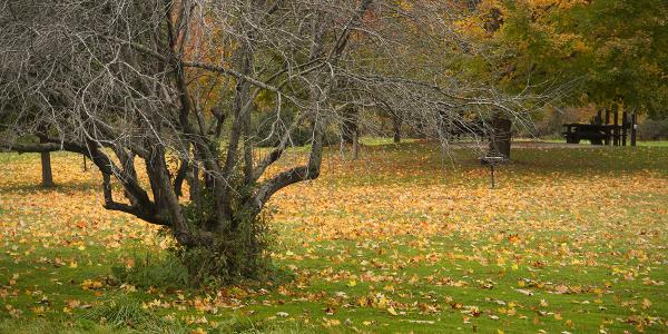 Grand Isle, Vermont
