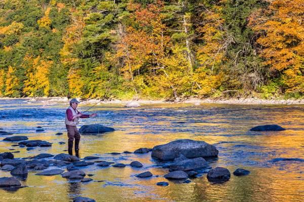 Fly Fishing on the Housatonic