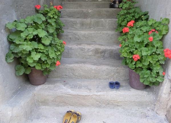 پله های خوشبخت