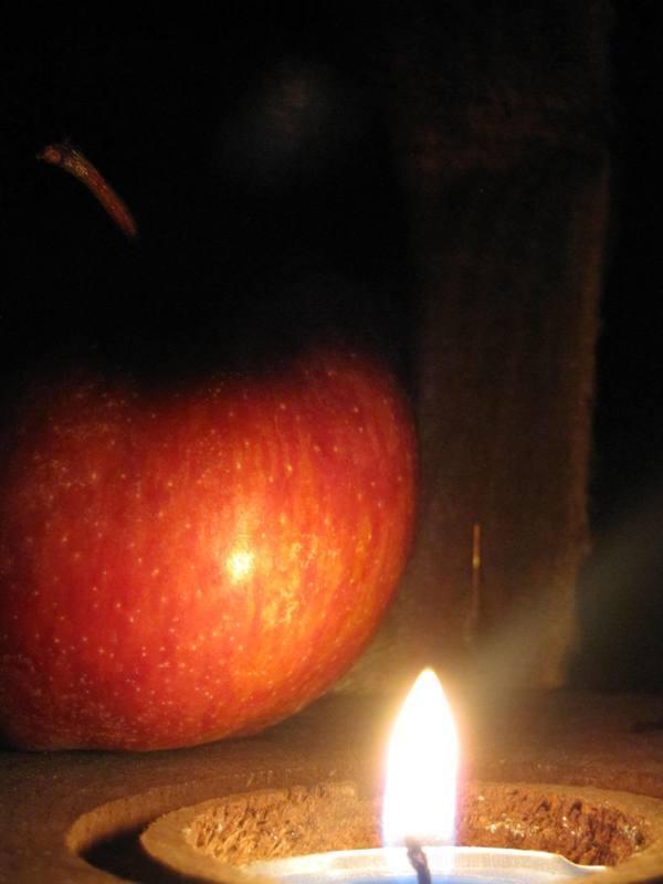 زندگانی سیبی است،گاز باید زد با پوست