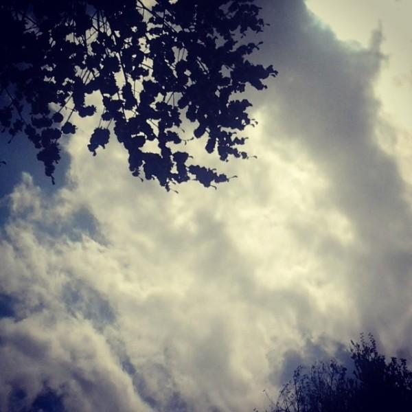 هوای ابری ِآسمان دلم را داری ؟