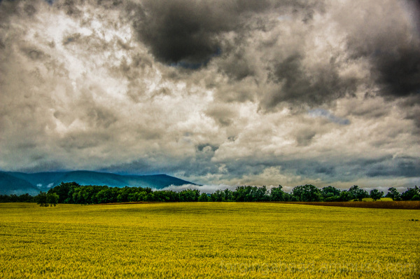 Shenandoah Valley Storm