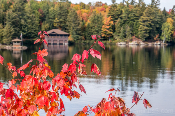 Adirondack Boathouse