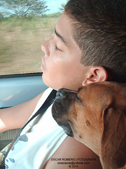 My nephew and my dog