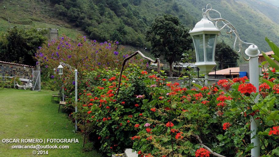 Jardín de la Posada San Martin