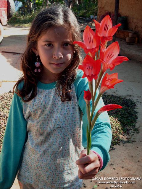 Mi sobrina recogiendo flores