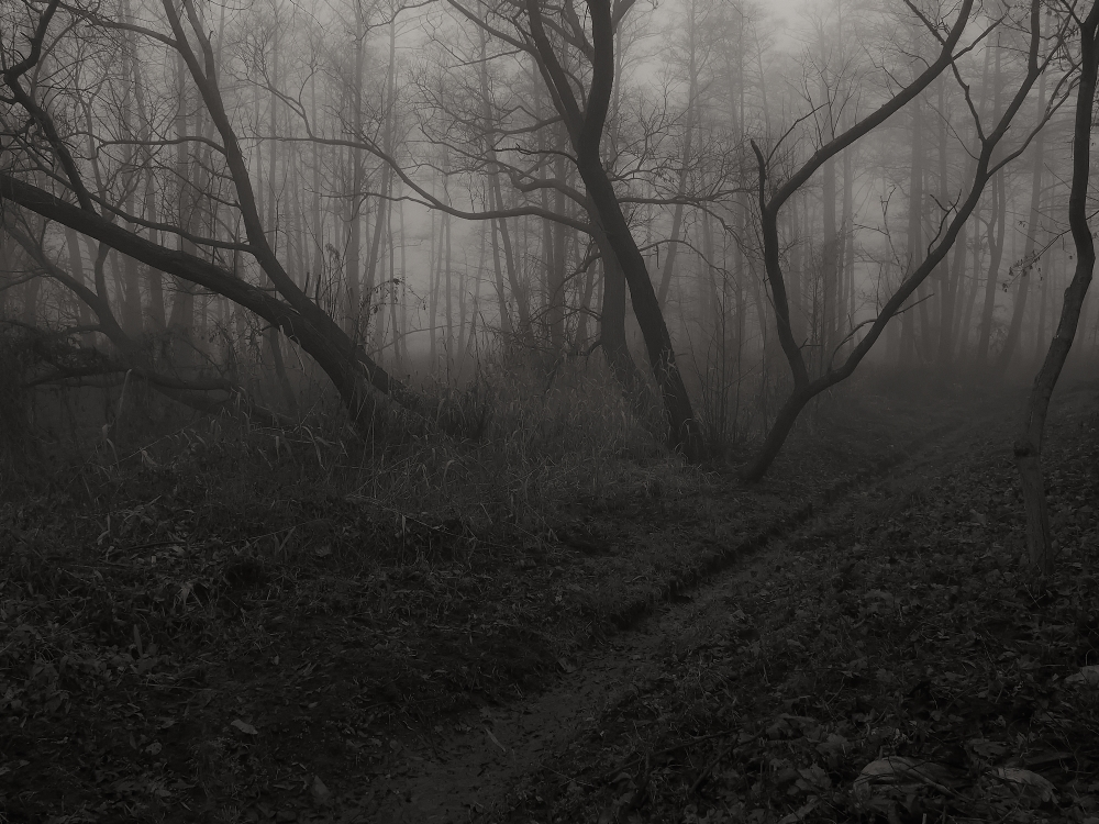 Path To Mystery