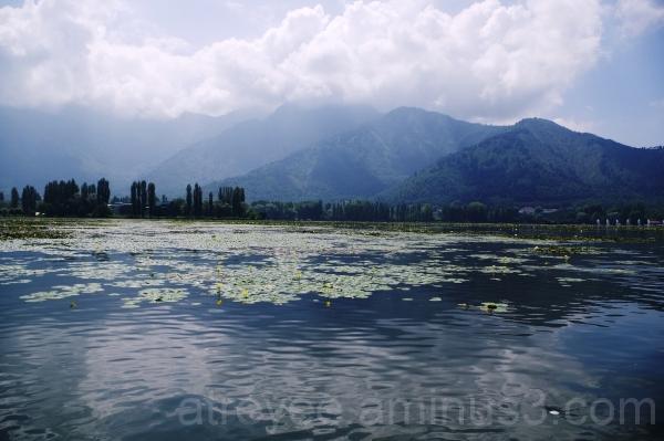 Dal Lake (1)