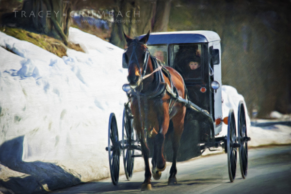 digital painting of an Amish buggy with little boy