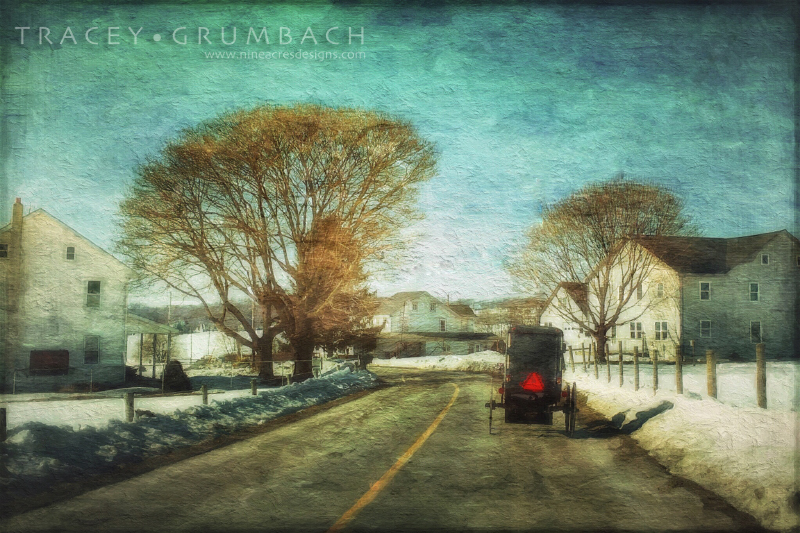 amish buggy along the winter roads of pennsylvania