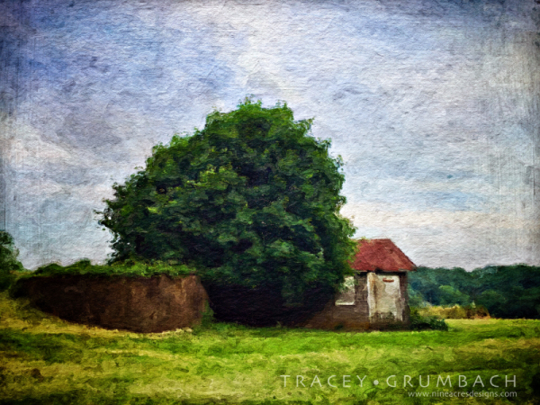 rural landscape in spring