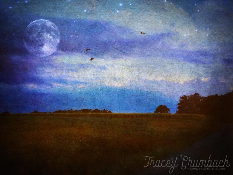 farm filed at dusk