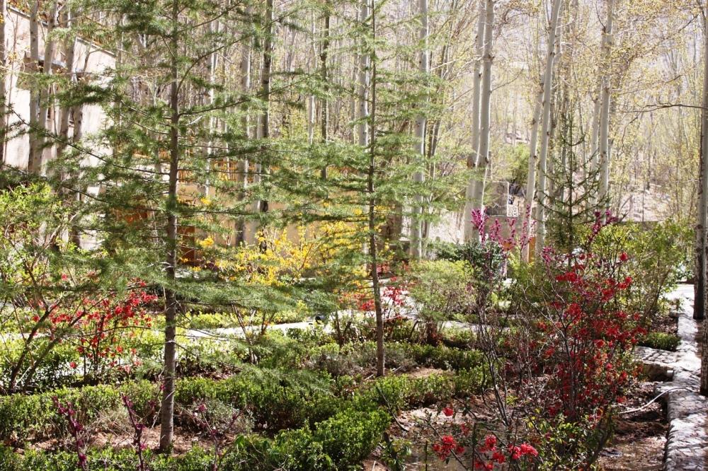 The Iranian Garden